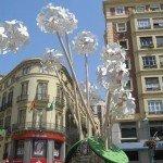 Resumen de la Feria de Malaga 2007