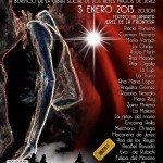 'Mujeres Flamencas Solidarias'  de Jerez 2013