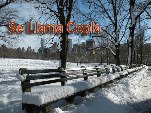 Se llama Copla también gusta en Nueva York